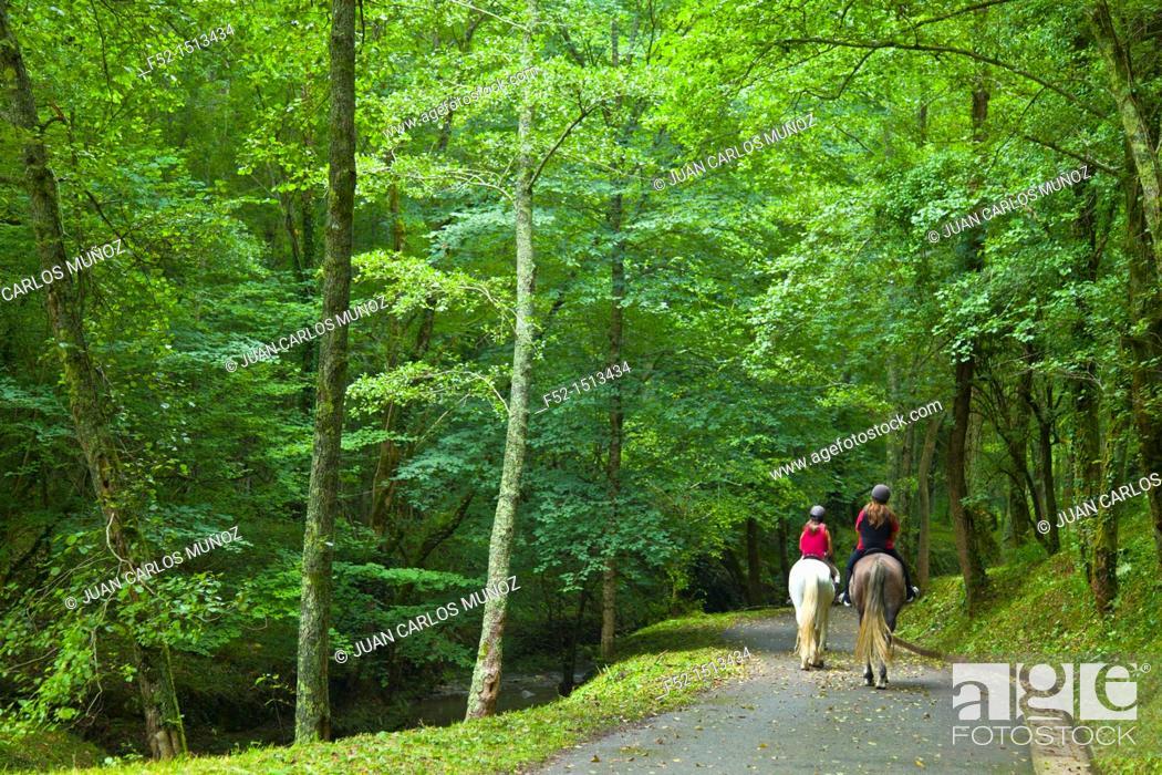 Stock Photo: Pagoeta Natural Park, Aia valley, Gipuzkoa, Basque Country, Spain.