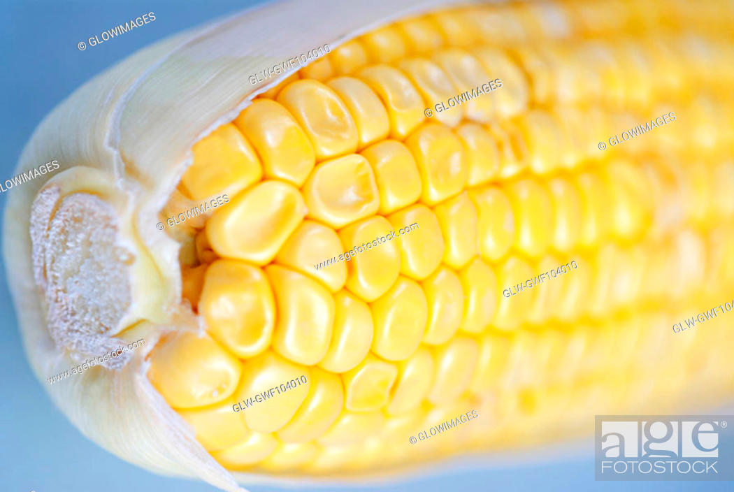 Stock Photo: Close-up of a corn on the cob.