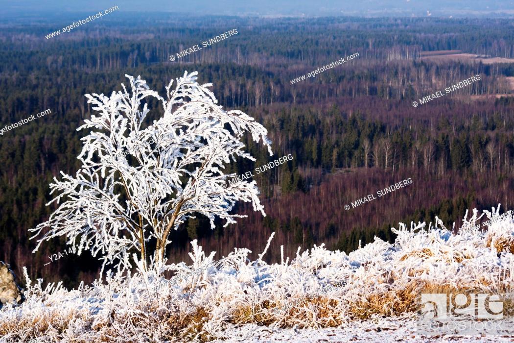 Stock Photo: Kumla snow vs green, Sweden.