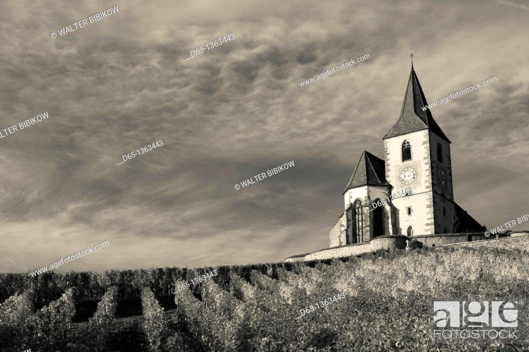 Stock Photo: France, Haut-Rhin, Alsace Region, Alasatian Wine Route, Hunawihr, town church, autumn.