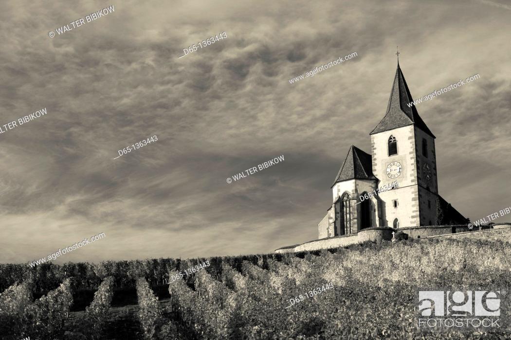 Stock Photo: France, Haut-Rhin, Alsace Region, Alasatian Wine Route, Hunawihr, town church, autumn.