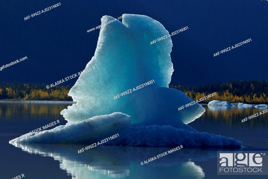 Stock Photo: Icebergs float on the calm surface of Mendenhall Lake, Mendenhall Glacier, Juneau, Southeast Alaska, Autumn.