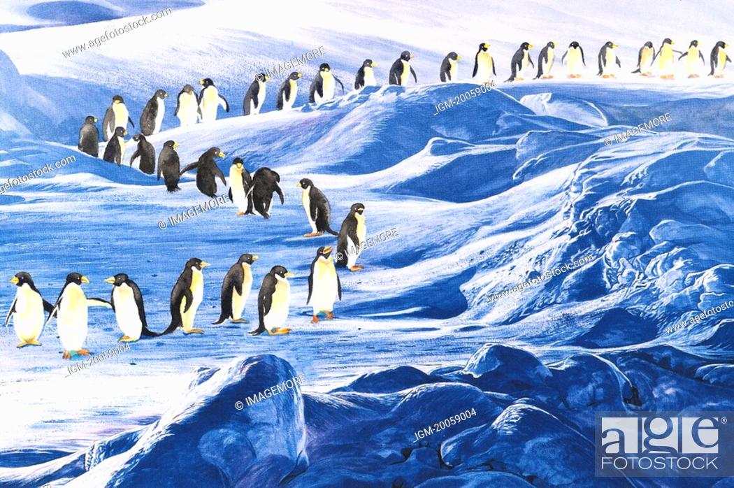 Stock Photo: Animal, Watercolor painting of a large group of penguins walking on the snow land.