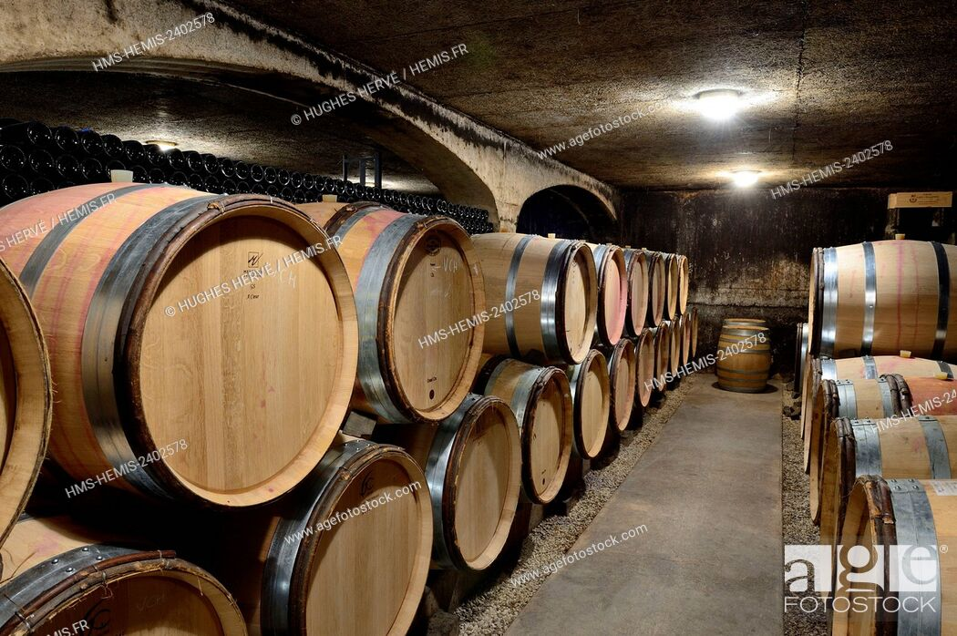 Photo de stock: France, Cote d'Or, Cultural landscape of Burgundy climates listed as World Heritage by UNESCO, Vosne Romanee, Domaine Rion.