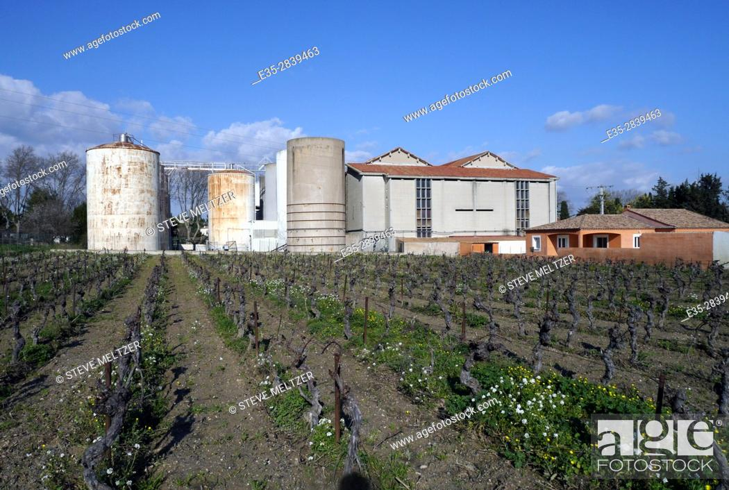Stock Photo: Vineyards surround a rural winery in the Herault of Southern France.