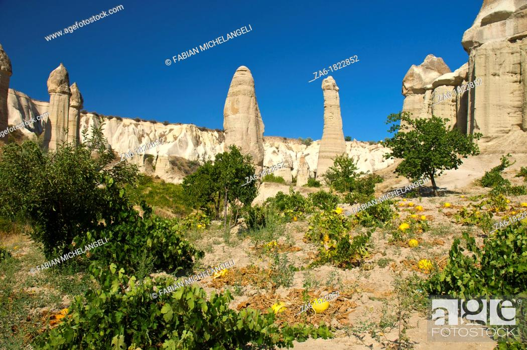 Imagen: Fairy chimneys and planted melons in Love Valley, in Cappadocia, Central Anatolia, Turkey.