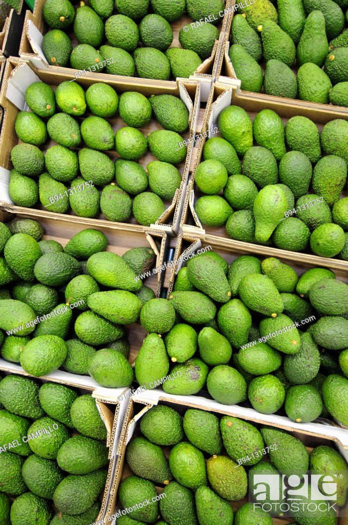 Stock Photo: Avocados in a supermarket, France.