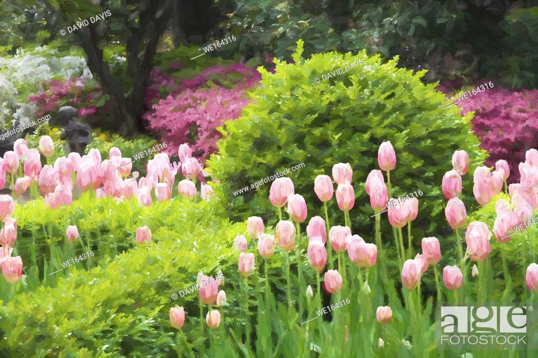Stock Photo: Impressionist art of a beautiful garden in Charleston South Carolina.