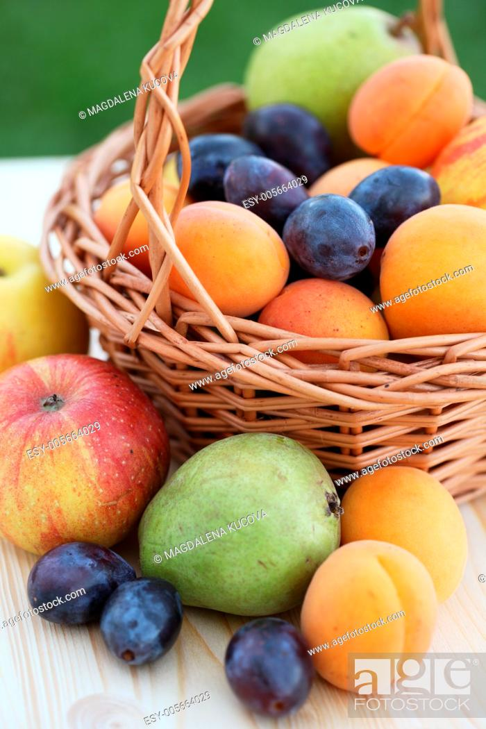 Photo de stock: Basket filled with aplpes, pears, apricots and plums.
