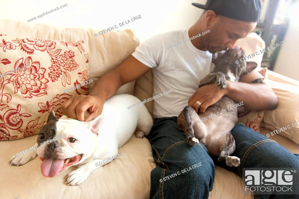 Stock Photo: Mid adult man sitting with two french bulldogs.