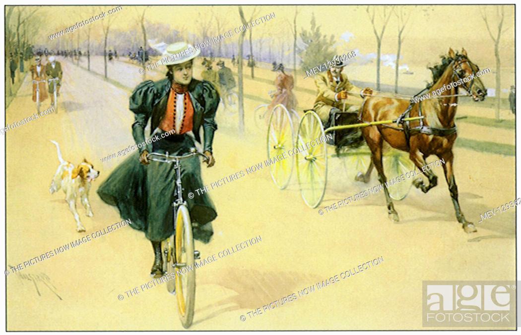 Stock Photo: Woman Bicycling.
