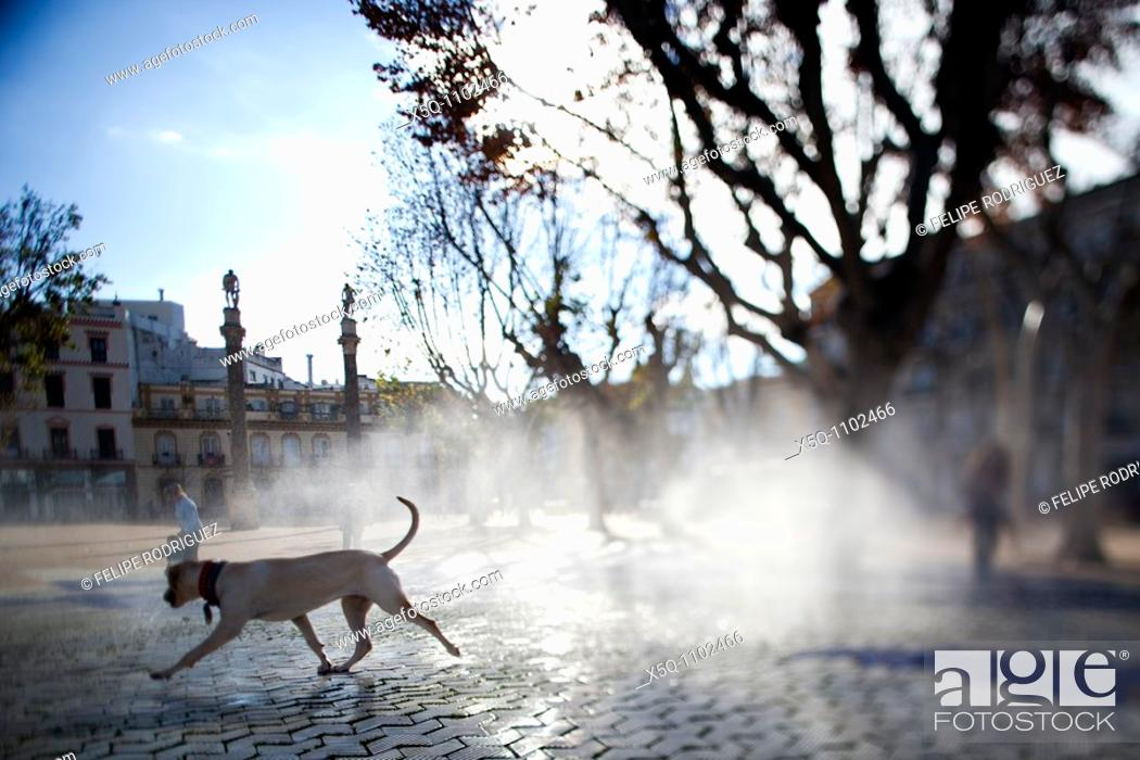 Stock Photo: Dog by a fountain, Alameda de Hercules square, Seville, Spain  Tilted lens used for shallower depth of field.