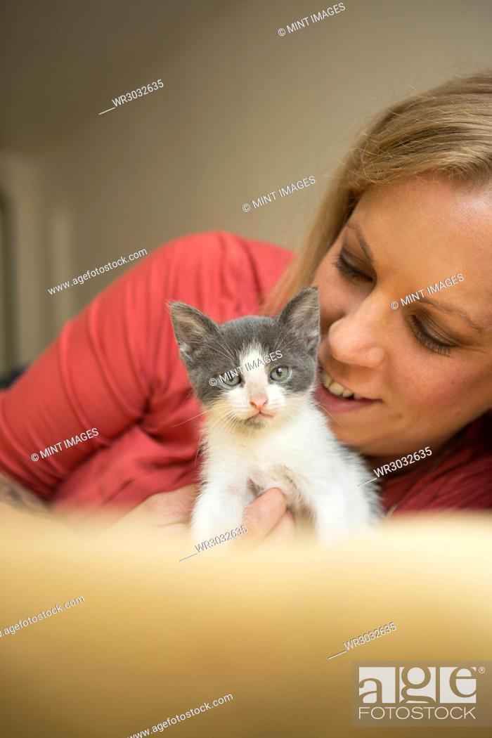 Stock Photo: A woman stroking a small grey and white kitten.