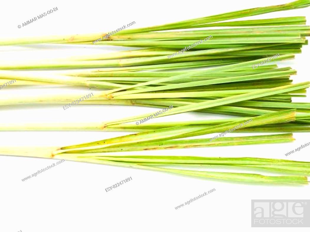 Stock Photo: Fresh Lemongrass isolated on white background.