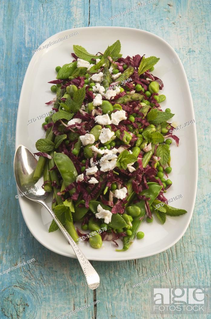 Stock Photo: Green vegan raddiccio salad.