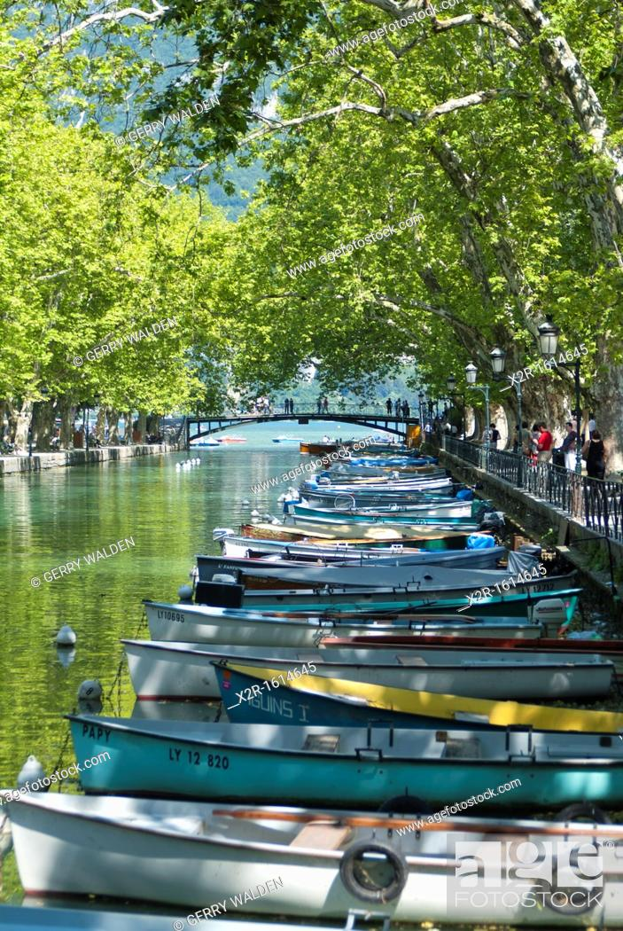 Stock Photo: Rowing boats on the tree-lined Canal du Vassé in Annecy, France.