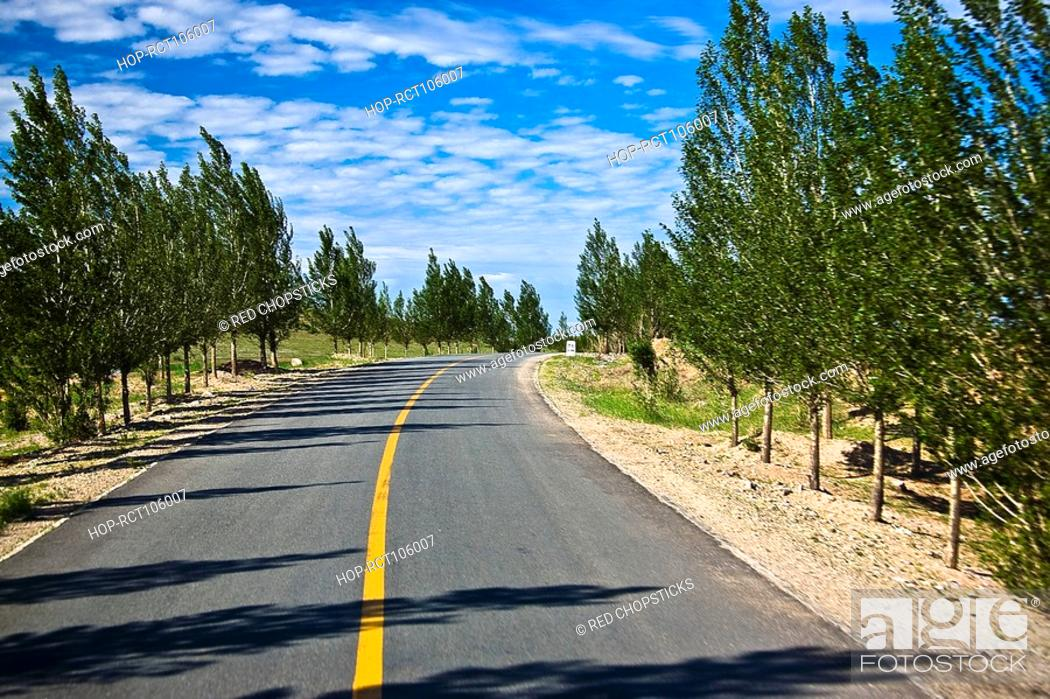 Stock Photo: Treelined along a road, Inner Mongolia, China.