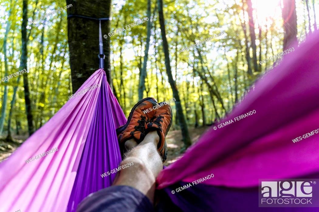 Stock Photo: Point of view shot of man lying in hammock in a forest.