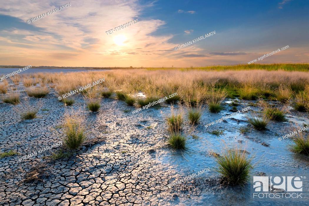 Photo de stock: Ukraine, Dnepropetrovsk Region, Novomoskovskiy District, Lake Soleniy Lyman, Desert at sunset.