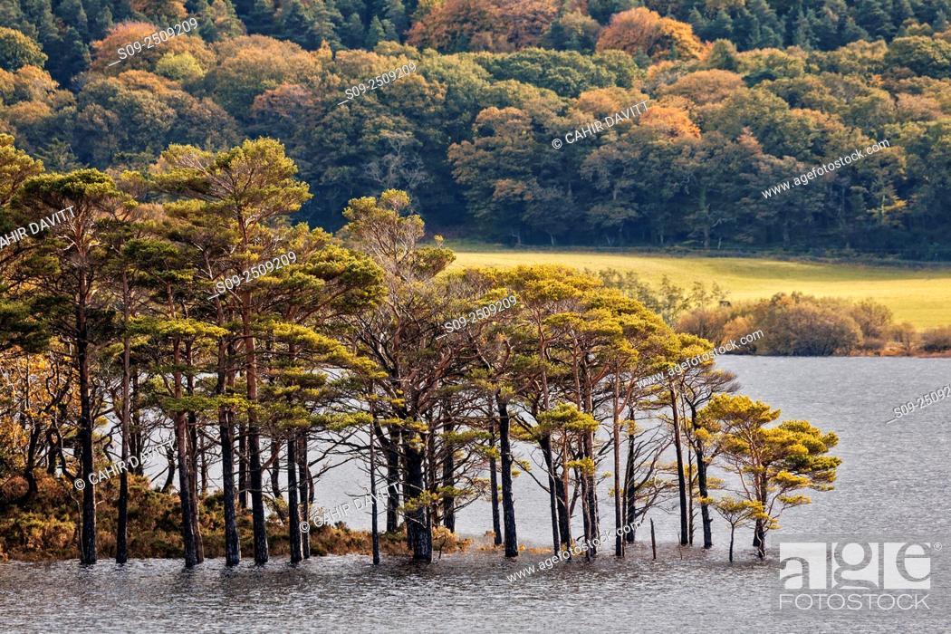 Stock Photo: Muckross Lake and Killarney National Park, Muckross, Co. Kerry, Ireland.