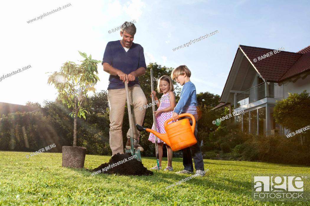 Stock Photo: Father and children planting tree in garden.