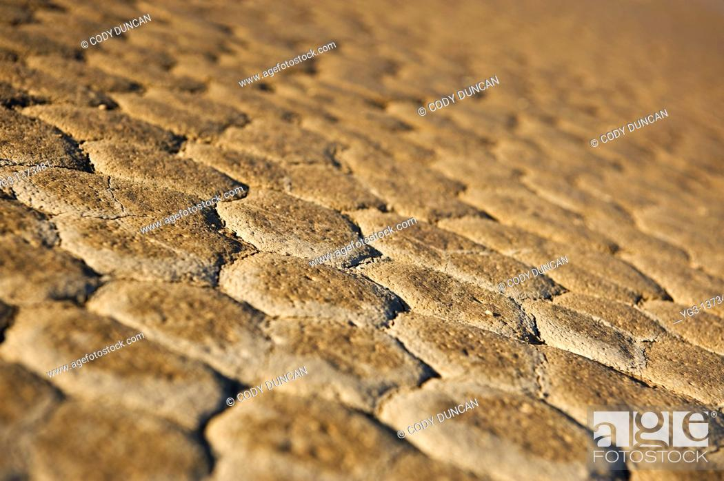 Stock Photo: Detail of dry lake bed of the Racetrack playa, Death Valley national park, California.