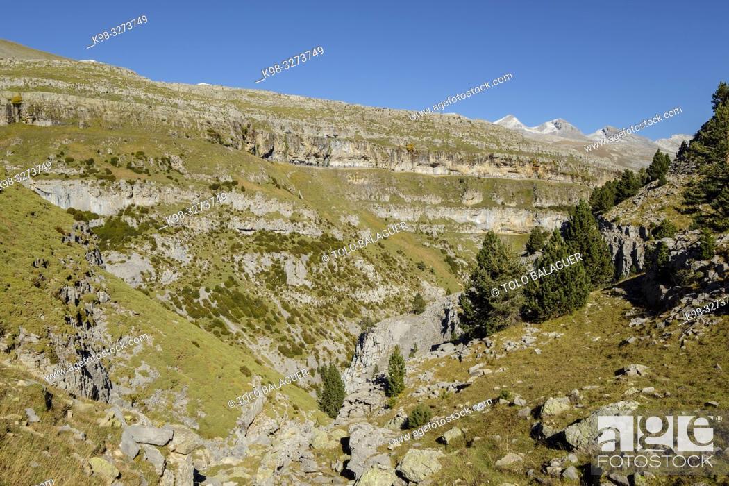Imagen: barranco de la Pardina, parque nacional de Ordesa y Monte Perdido, comarca del Sobrarbe, Huesca, Aragón, cordillera de los Pirineos, Spain.