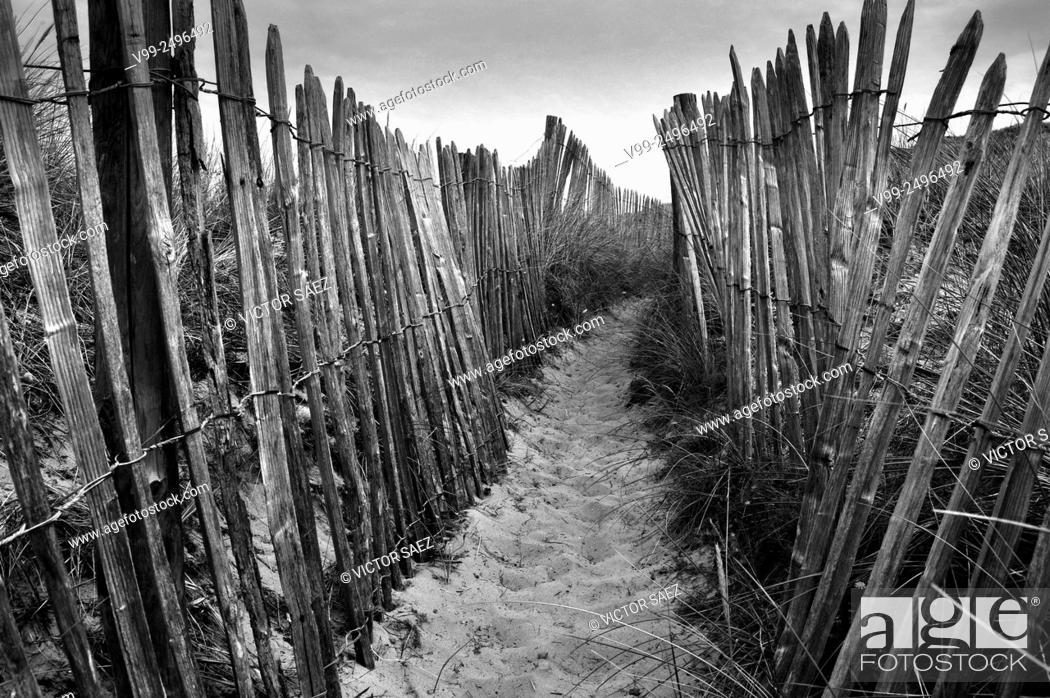 Stock Photo: landscape path.