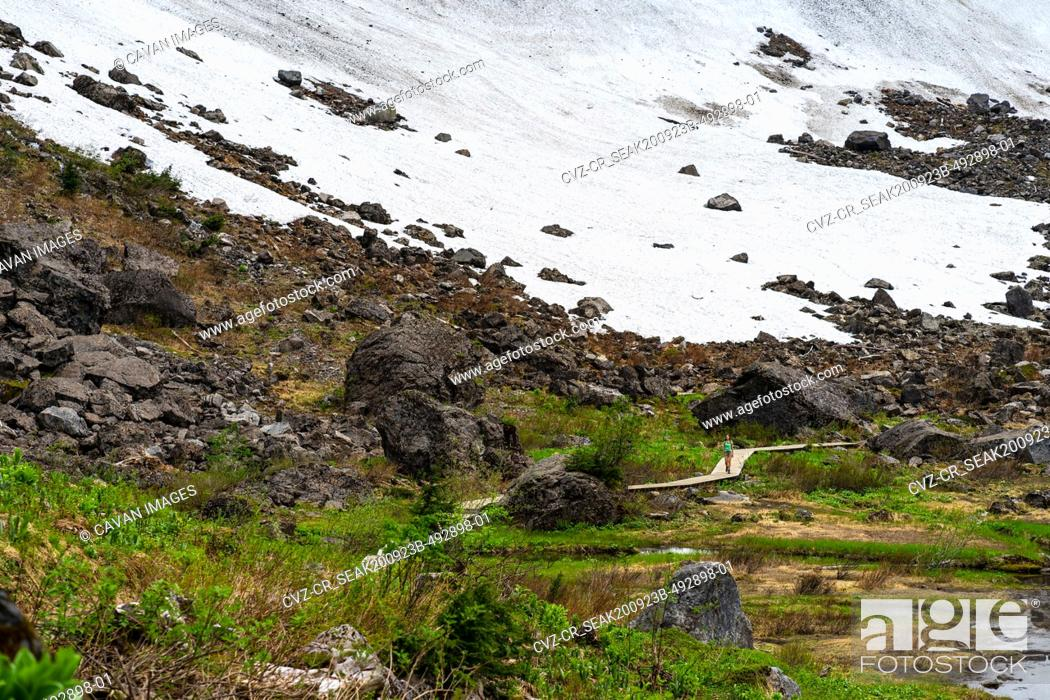 Photo de stock: Female hiker walking at the edge of the snowfield in washington.