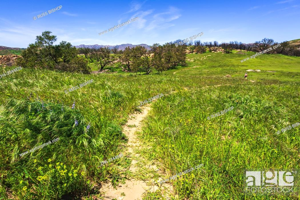 Stock Photo: Hiker on the West Meadow Trail at Charmlee Wilderness Park, Malibu, California USA.