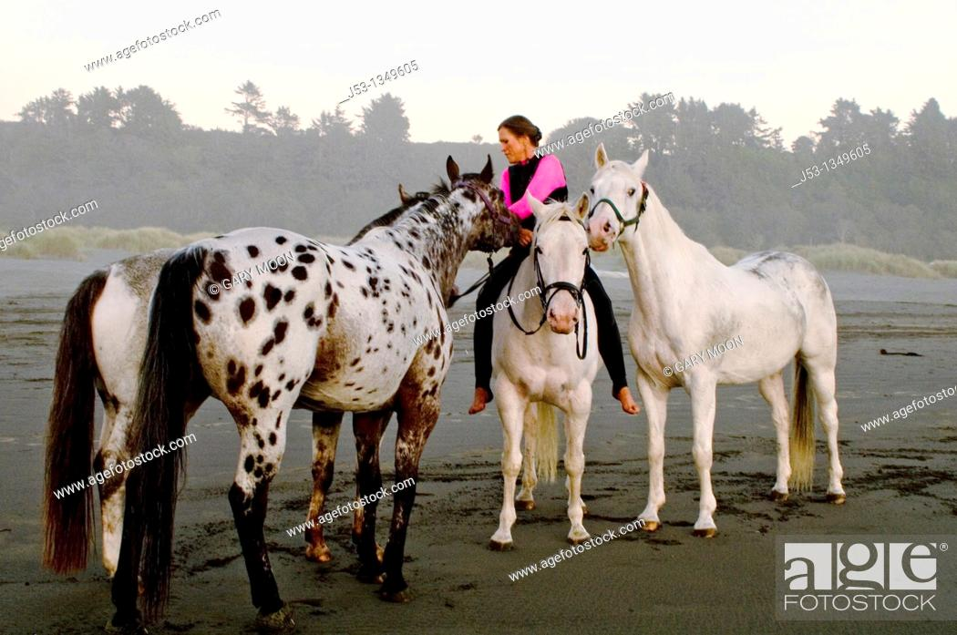 Stock Photo: Woman riding horse bareback on beach with other horses. US Pacific coastline. California.
