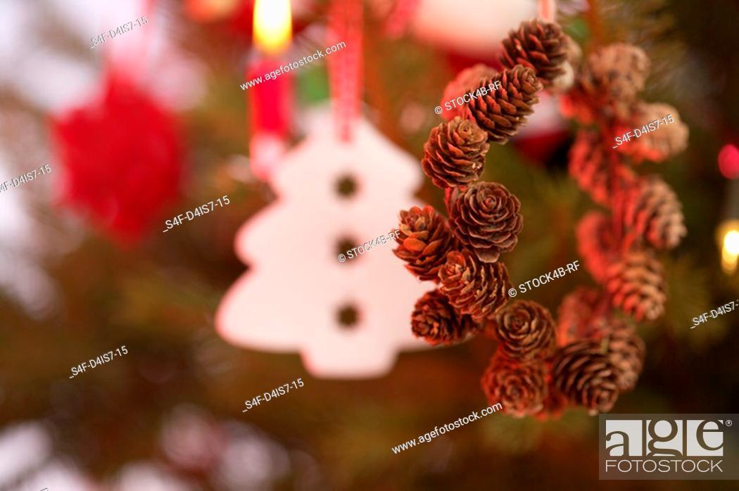 Stock Photo: Wreath of larch cones.