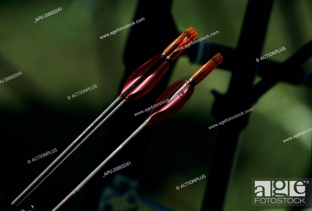 Stock Photo: Close up of two archery arrows.