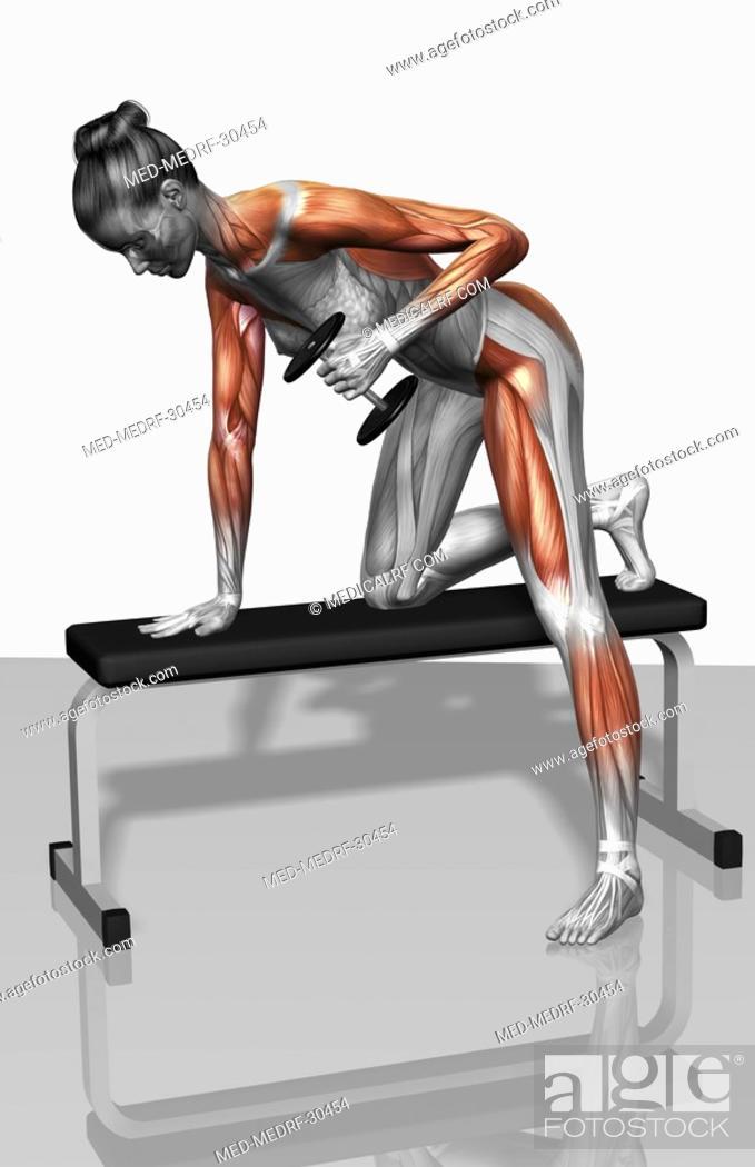Stock Photo: Dumbbell kickback exercise Part 2 of 2.
