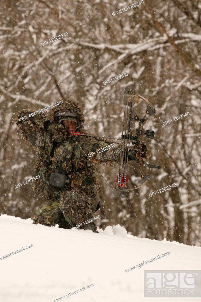 Male Bowhunter Draws Bow In Snow While Deer Hunting, Stock