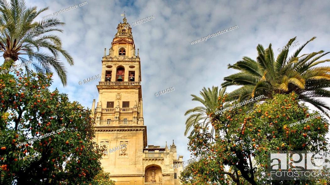 Stock Photo: Tower and «patio de los naranjos», Mezquita Cathedral Arab Wall. Cordoba City Andalusia, Spain, Europe.