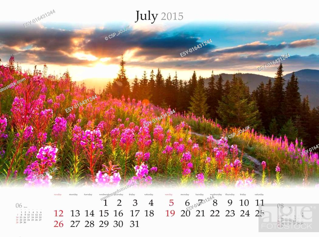 Stock Photo: Calendar 2015. July. Beautiful summer sunset on the field of whe.