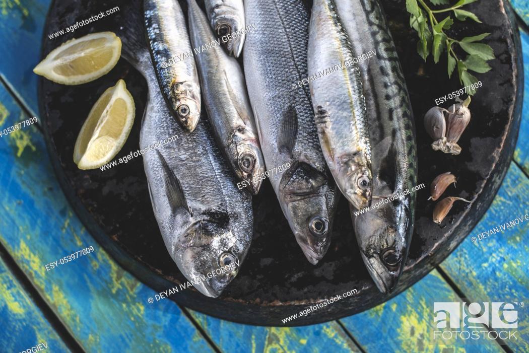 Stock Photo: Raw fish. Sea bream, sea bass, mackerel and sardines. Blue wooden background.