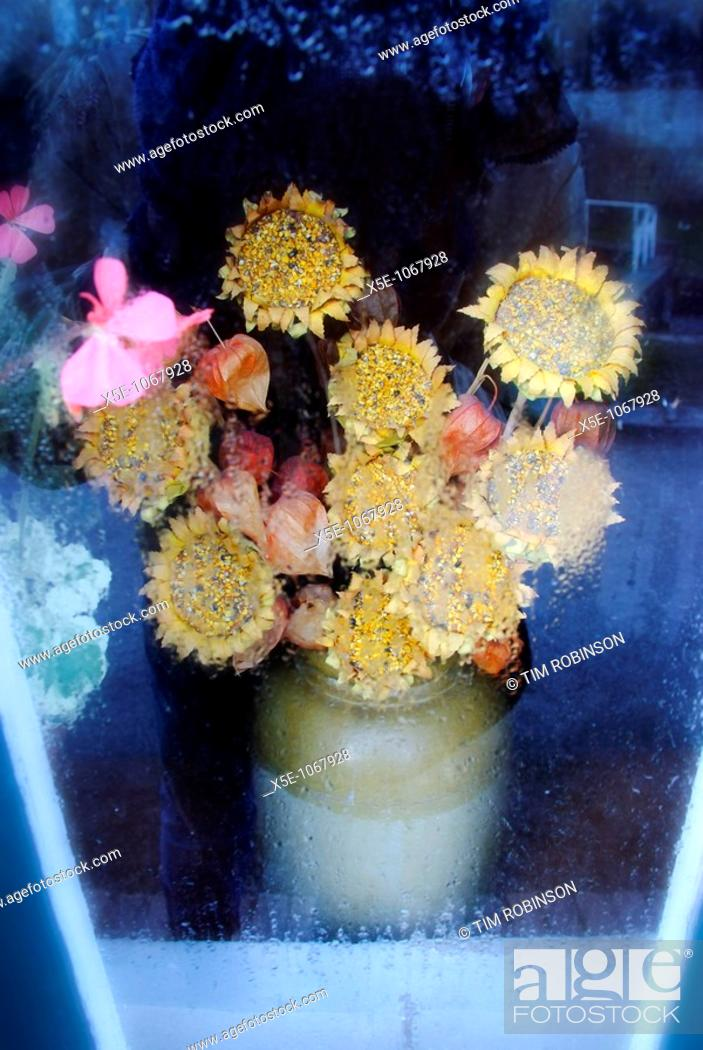 Stock Photo: Vase of imitation yellow sunflowers in canal boat window.