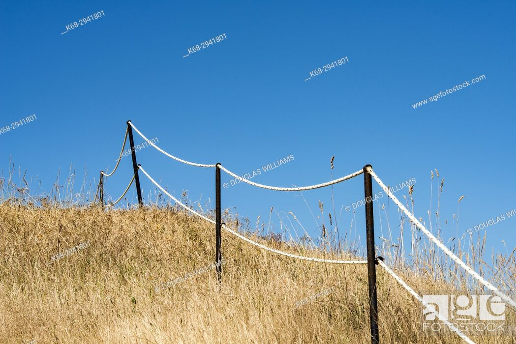 Imagen: fence, grass, East Point.