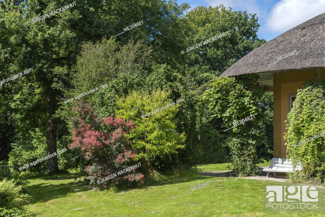 Imagen: Friendship Temple in the Landscape Garden and Castle Park of Lütetsburg Castle, Lütetsburg, Lower Saxony, Germany, Europe.