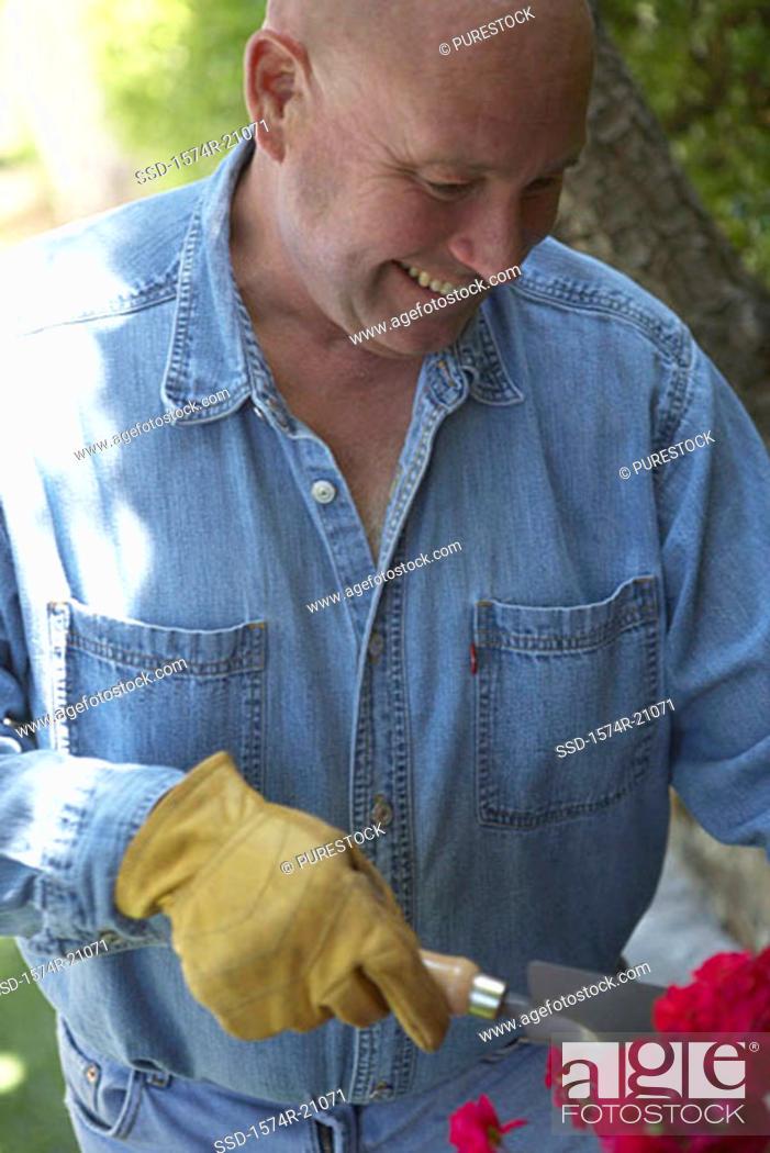 Stock Photo: Close-up of a mature man gardening.