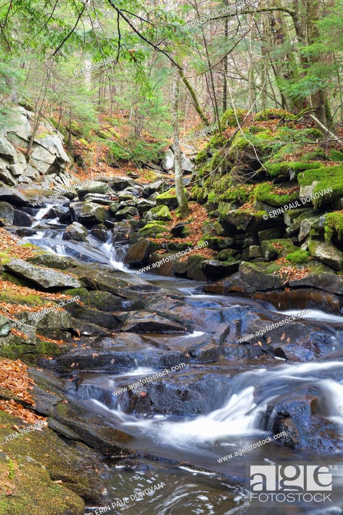 Stock Photo: Whitcher Brook in Benton, New Hampshire USA during the autumn months.