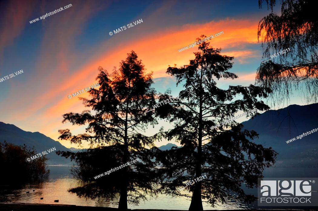 Stock Photo: Trees on the lake front with mountain and blue sky and orange clouds in sunrise.