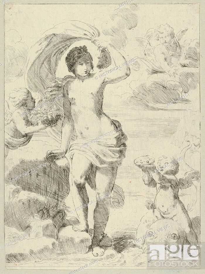 Stock Photo: Venus stepping out of the sea, holding a billowing drapery in her left hand, Cupid at right offering pearls while riding a dolphin and a putto at left offering.