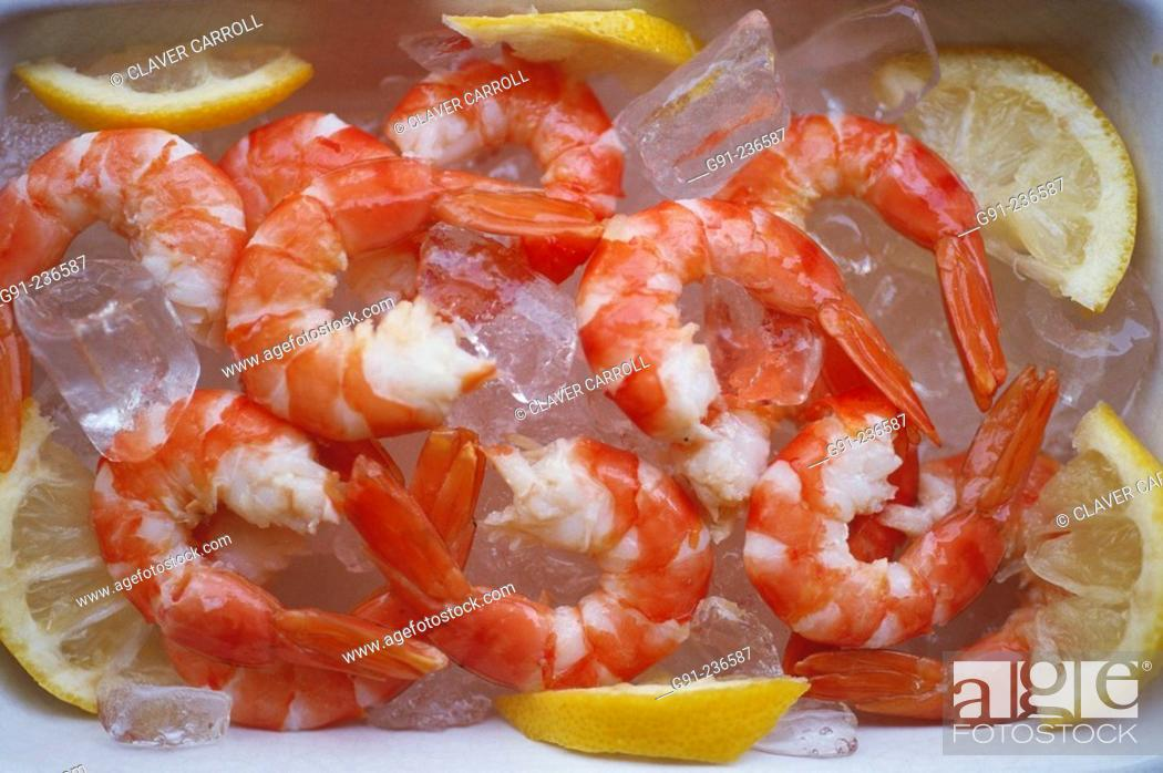 Stock Photo: Cooked tiger prawns on ice.