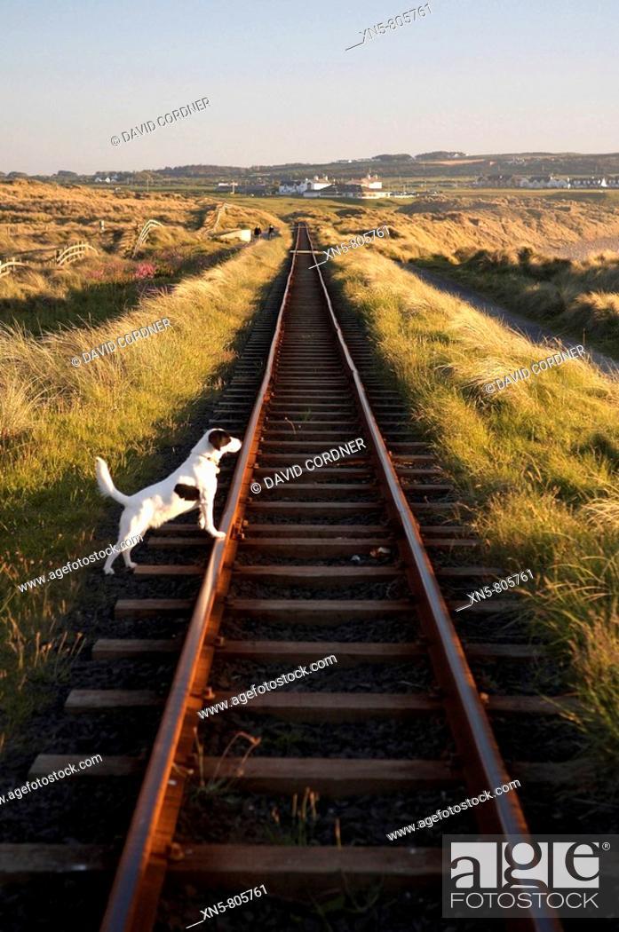 Stock Photo: Bushmills Railway, Co Antrim.