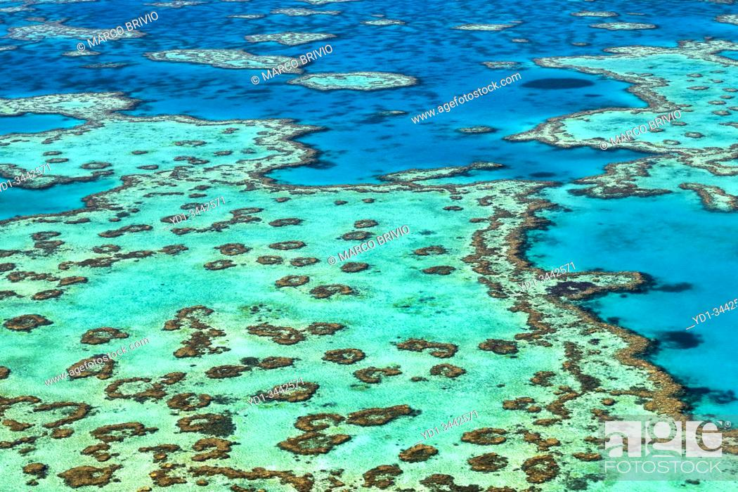 Stock Photo: Great Barrier Reef. Whitsundays. Queensland Australia.