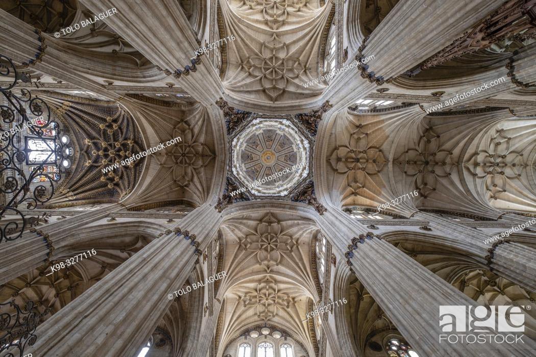 Imagen: Crucero de la catedral, Catedral de la Asunción de la Virgen, Salamanca, comunidad autónoma de Castilla y León, Spain.