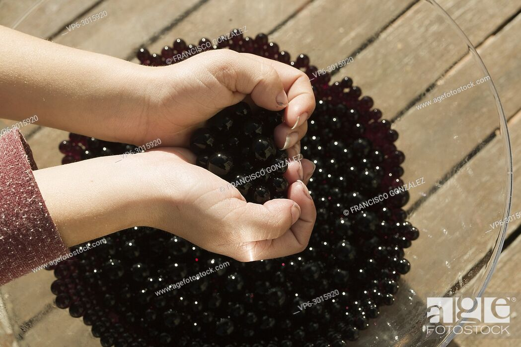 Photo de stock: Hands of a girl touching gel beads that swell with water. Horizontal shot.